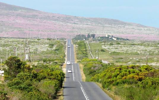 The road to Gansbaai